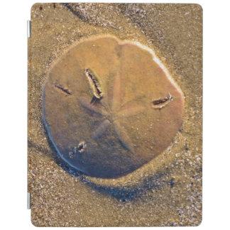 Sand Dollar Revealed On Beach | Hilton Head Island iPad Cover