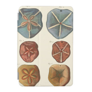 Sand Dollars Gems iPad Mini Cover