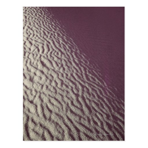 Sand dune 2 postcard