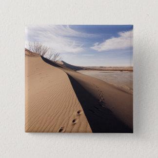 Sand dune formations. Bruneau Dunes State Park 15 Cm Square Badge