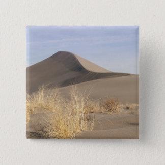 Sand dune formations. Bruneau Dunes State Park 2 15 Cm Square Badge