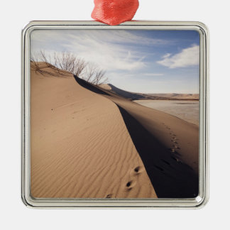 Sand dune formations. Bruneau Dunes State Park Christmas Ornament