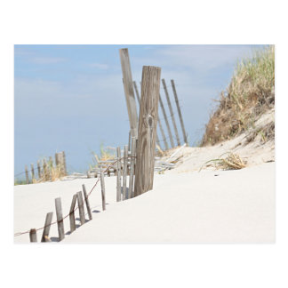 Sand dune photo postcard
