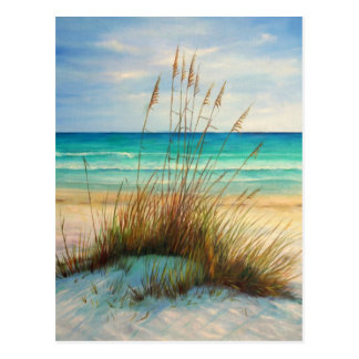 sand dunes 1.jpg postcard