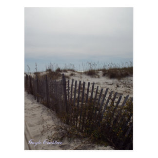 Sand dunes and beach on the Gulf Coast, Alabama Postcard