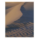 Sand dunes at Mesquite Flats Posters
