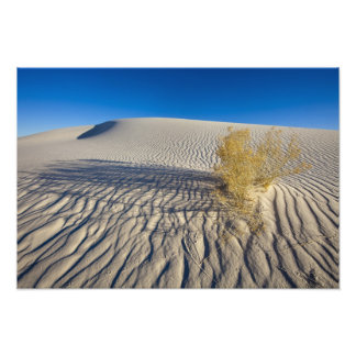 Sand dunes at White Sands National Monument in 3 Art Photo