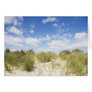 Sand dunes card