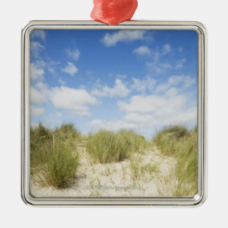 Sand dunes christmas ornament