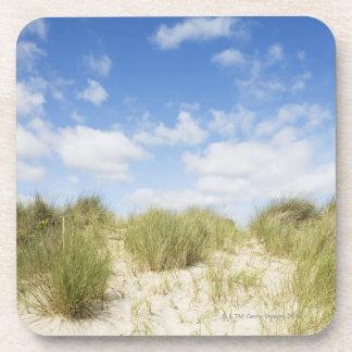 Sand dunes coaster