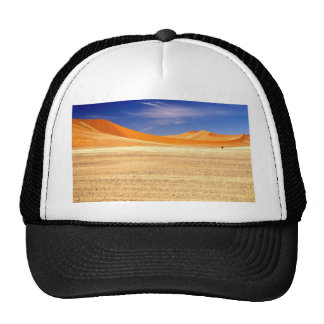 Sand dunes of Namibia Cap