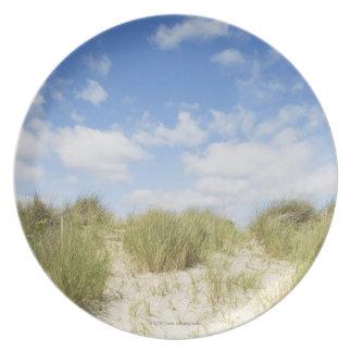 Sand dunes plate