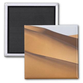 Sand dunes, Sahara desert, Morocco 2 Magnet