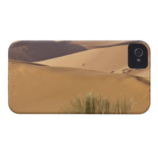 Sand dunes, Sahara desert, Morocco iPhone 4 Case-Mate Cases