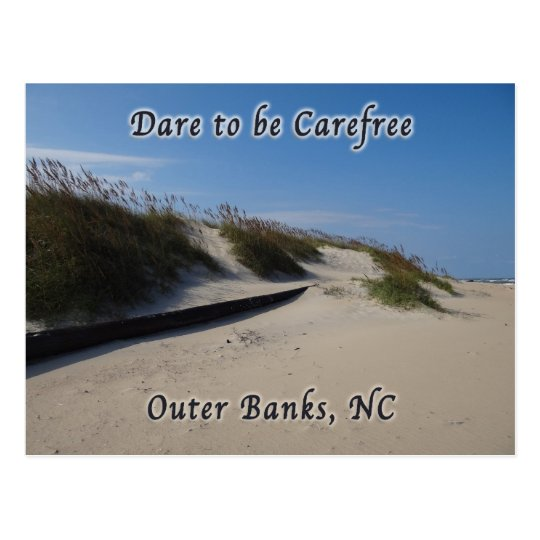 Sand Dunes Sea Oats Outer Banks NC Postcard