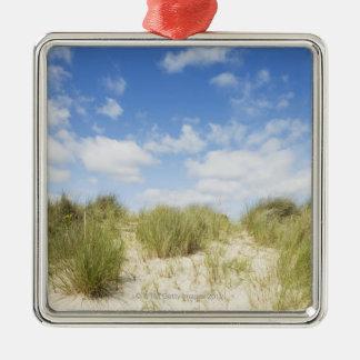 Sand dunes Silver-Colored square decoration