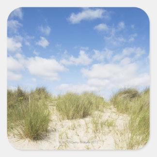 Sand dunes square sticker