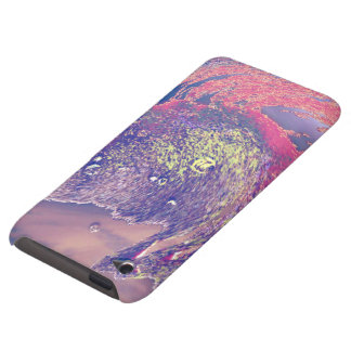 sand painting iPod touch cover