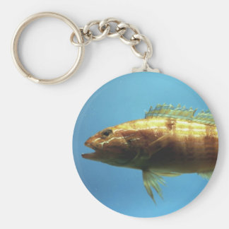 Sand Perch Fish Basic Round Button Key Ring