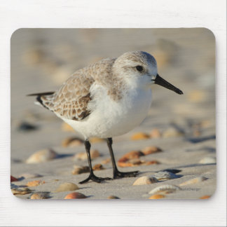 Sand Piper and Seashells Mouse Mat