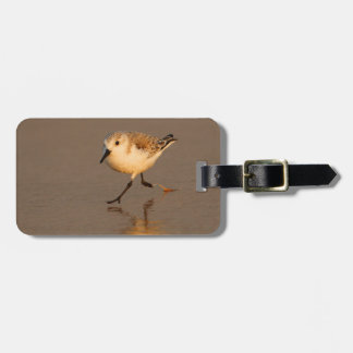 sand piper luggage tag