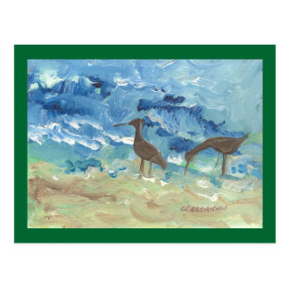Sand piper post card