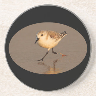 sand piper running on beach beverage coasters