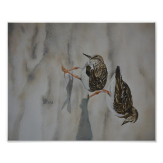 Sand Pipers Bird Art Reproduction Photo Print