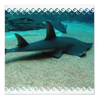 Sand Shark Invitations