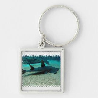 Sand Shark Keychain