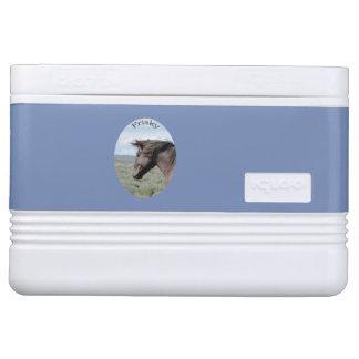 Sand Wash Basin Cooler Igloo Cool Box