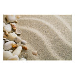 Sand With Shells And Stones. Beach Composition Print