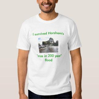Sandbags, I survived, Horsham's once i... T Shirt