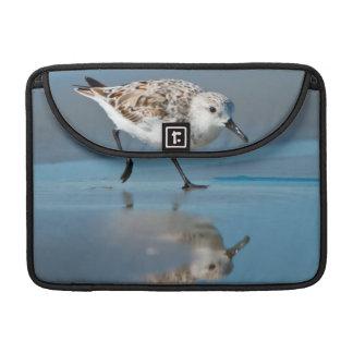 Sanderling (Calidris Albe) Feeding On Wet Beach MacBook Pro Sleeves