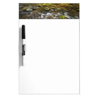 Sanderson Brook.  Chester-Blanford State Forest. Dry Erase Board