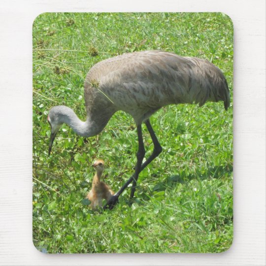 Sandhill Crane and Chick Mouse Mat