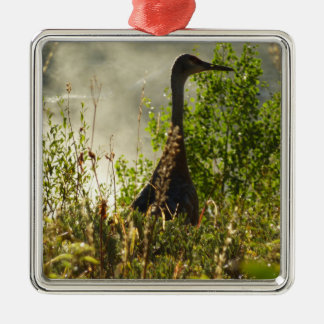 Sandhill Crane at Moose Ponds in Grand Teton Silver-Colored Square Decoration