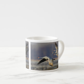 sandhill crane flock in flight
