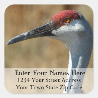 Sandhill Crane Return Address Label Square Sticker