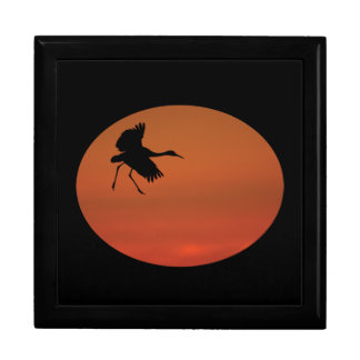 sandhill crane walking on air gift box