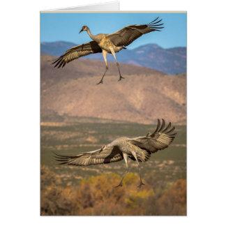 Sandhill Cranes in Flight Card