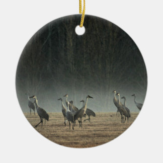 Sandhill Cranes in the Early Morning Spring Mist Christmas Ornament