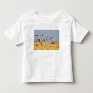 Sandhill cranes land in corn fields toddler T-Shirt