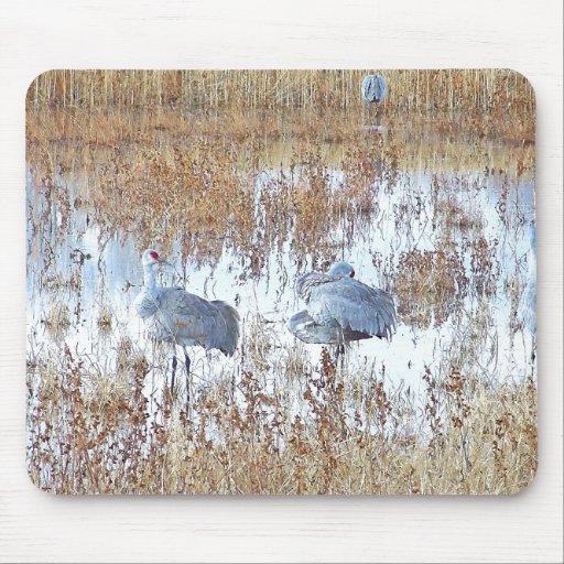Sandhill Cranes & Light Mousepad