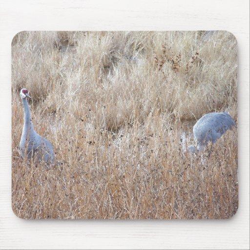Sandhill Cranes Mousepad