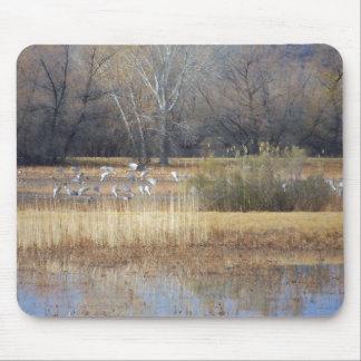 Sandhill Cranes Wetlands Mousepad