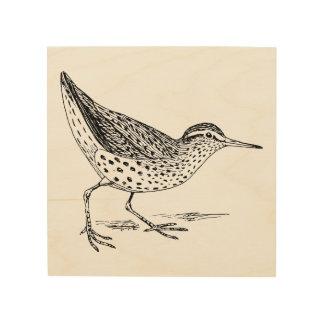 Sandpiper Bird Art Wood Canvases