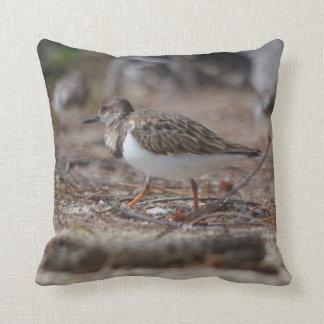 """Sandpiper Bird, Throw Pillow 16"""" x 16"""""""