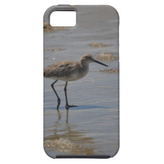 Sandpiper on Beach iPhone 5 Covers