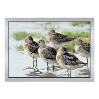 Sandpipers at Water's Edge 13 Cm X 18 Cm Invitation Card